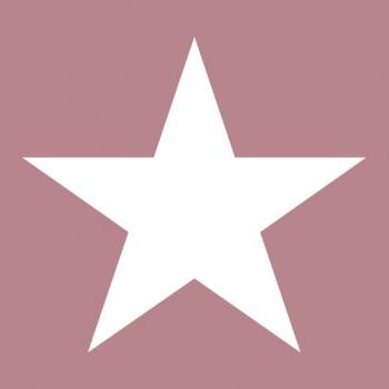 https://www.lesparisinnes.es/2406-thickbox_atch/servilletas-star-pale-rose.jpg